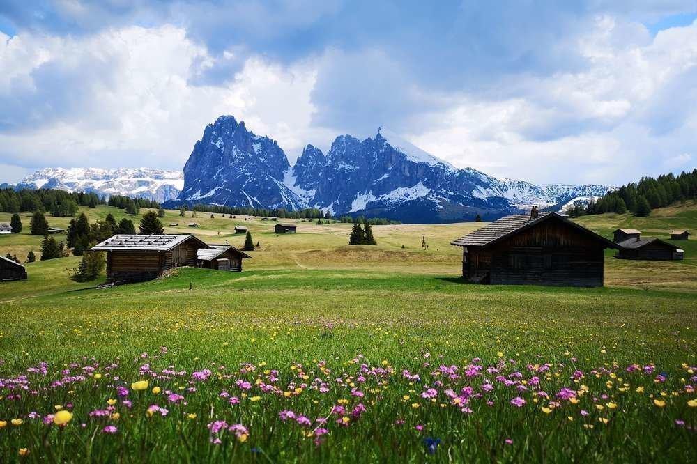 Geführte Blumenwanderung im Naturpark Schlern-Rosengarten